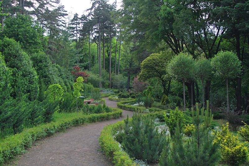 Tbilisi Botanical Garden Tbilisi Local Guide